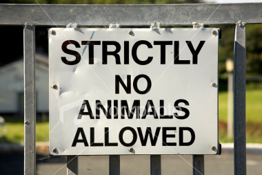 No animal products used in Vegan Wines