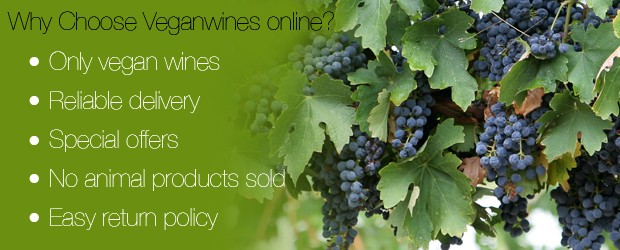 Why Vegan winesonline?